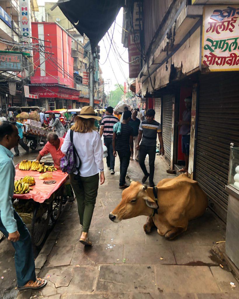 Delhi'de Gezilecek Yerler